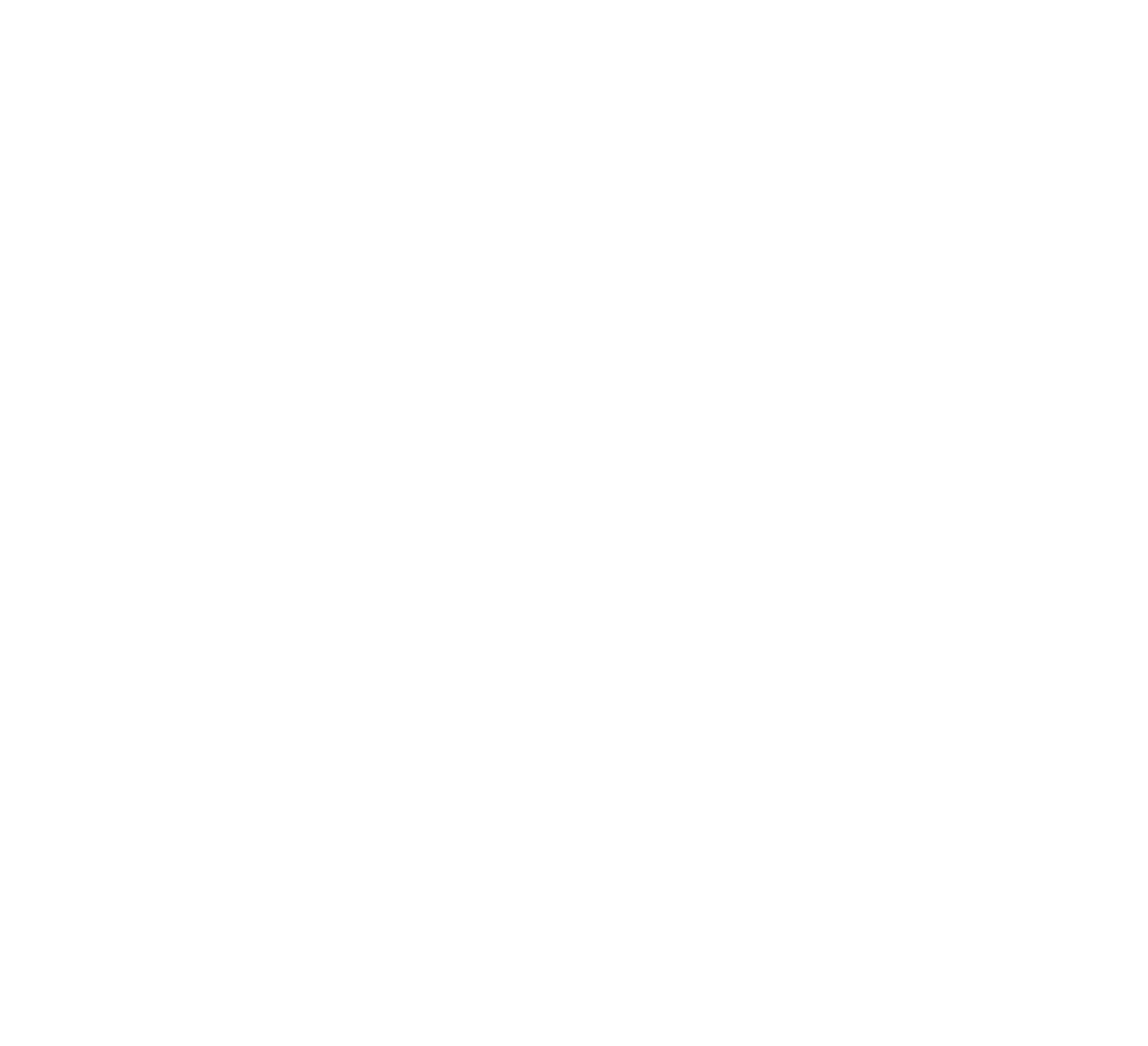 3DScan – Smart Surveying